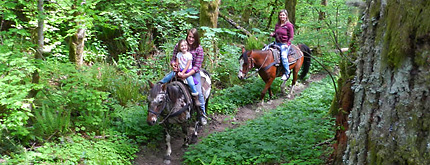 photo of horseback riding at EZ Times Guided Trail Rides